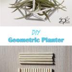 ♥ Geometric Planter