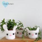 ♥ Crochet Plant Pots, Sanseviera part 2