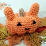 ♥ Amigurumi Bunny Pumpkin